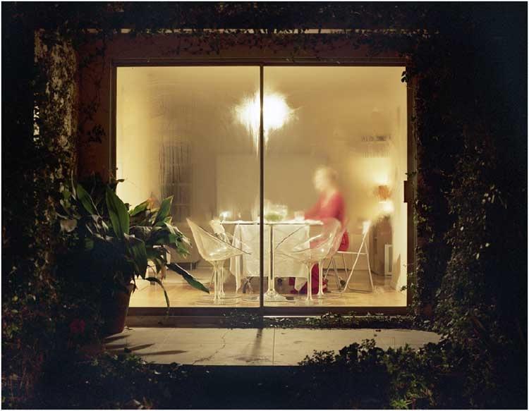 Frank Darius: Willkommen im Garten