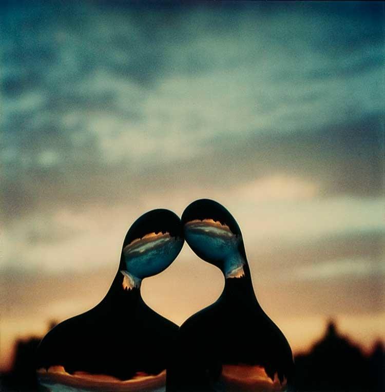 André Kertész: 3. Juli 1979, Original Polaroid SX-70, 7,9 x 7,9 cm, Courtesy Stephen Bulger Gallery