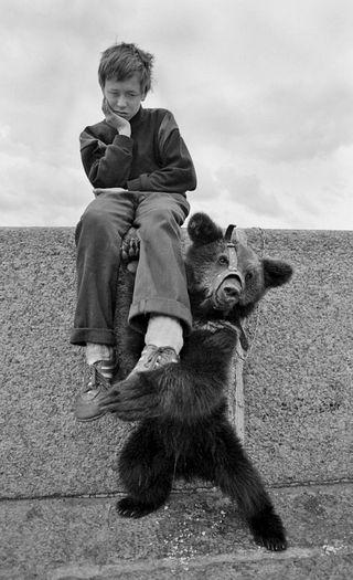 Tanzbären-Paradox: Strassengeschichte