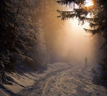 Landschaftsfotografie: Romantische Winterstimmung