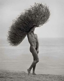Male Nude with Tumbleweed, Paradise Cove, 1986