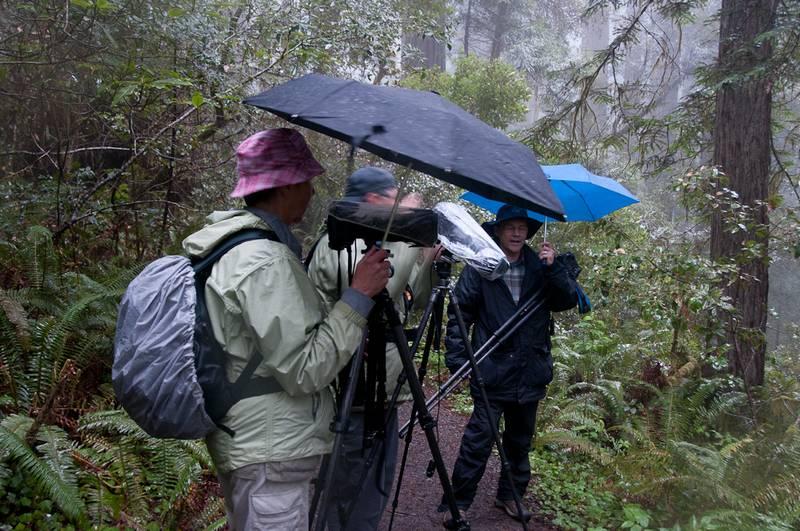 Fotografen im Wald bei Regen