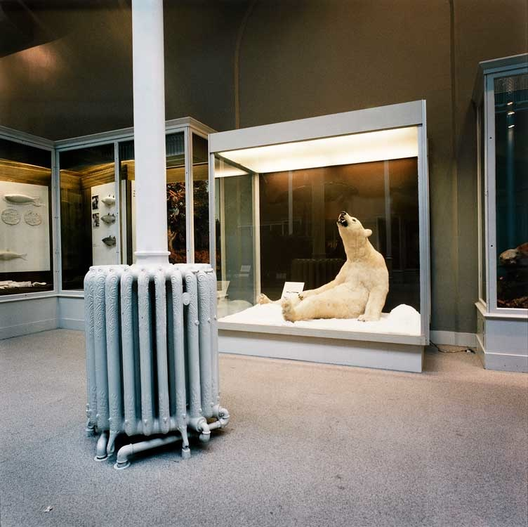 Richard Ross: Scottish National Museum, Edinborough, 1993