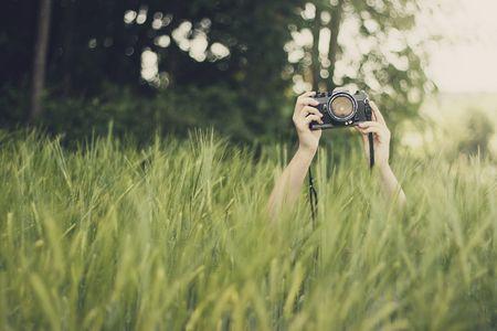 Konzeptfoto: Blickfang im Feld