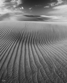 Das Wüstenbild in Schwarz Weiss
