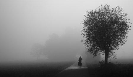Landschaftsstimmung: Nebel als Offenblende-Ersatz
