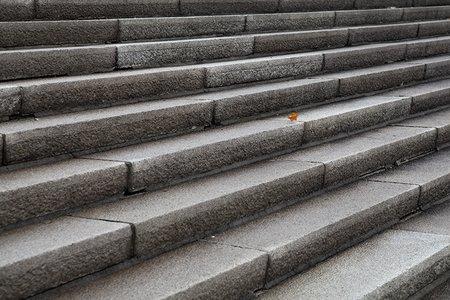 Suchbild auf Steintreppe: Finde das Blatt!
