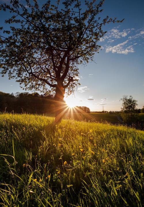 Bildkritik: Landschafts-Schnappschuß: Regelbrüche bewußt einsetzen