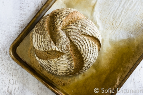 Einfhrung in Essensfotografie (Food Fotografie) und Food Styling / Teil 3