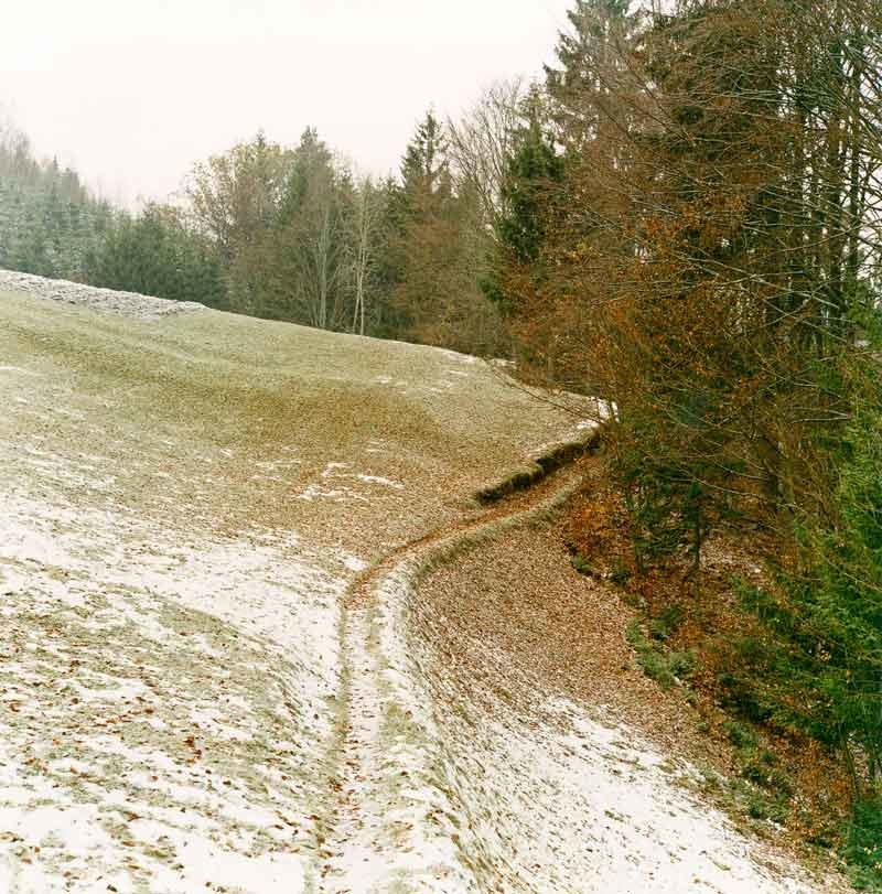 Bernhard Fuchs: Pfad, Helfenberg, 2004