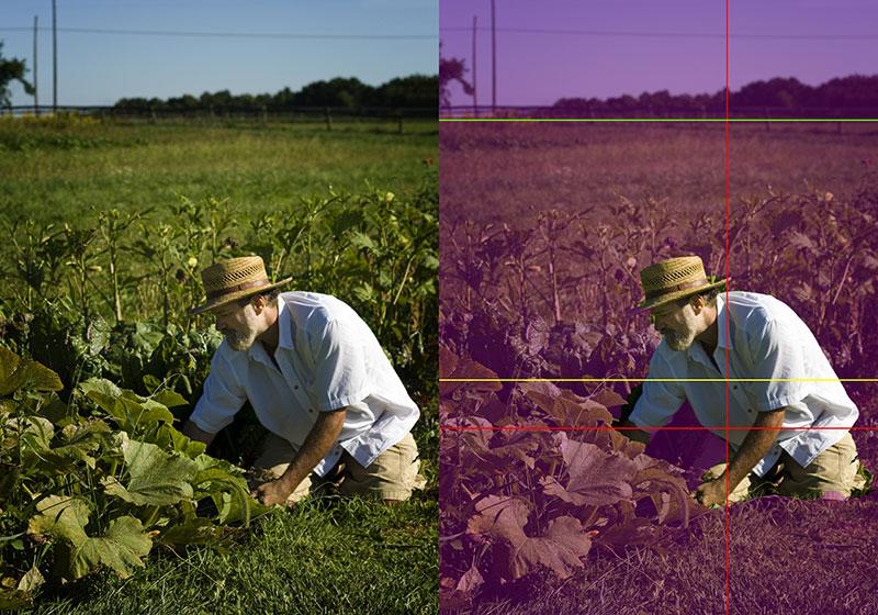 Fotografische Komposition – Teil 3 von 3: Die praktische Anwendung