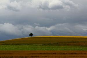 minimalistischeslandschaftsfoto.jpg