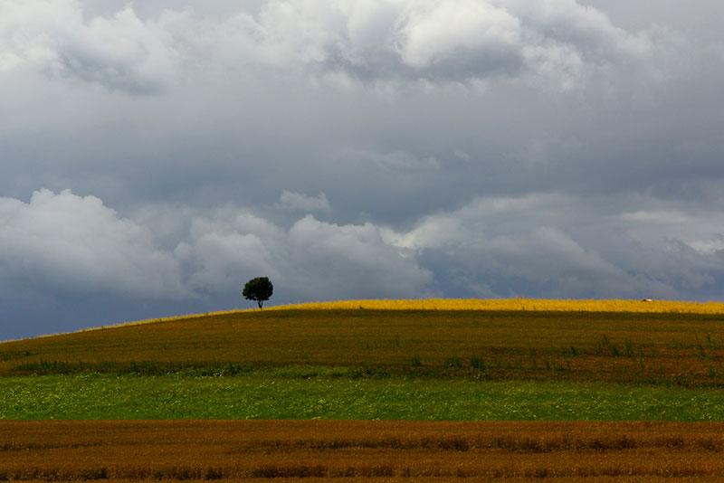Leserfoto: Minimalistisches Landschaftsfoto – Mehr Farbintensität