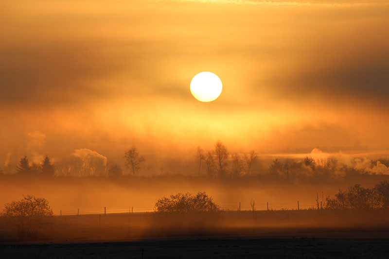 Leserfoto: Die Sonne im Nebel 