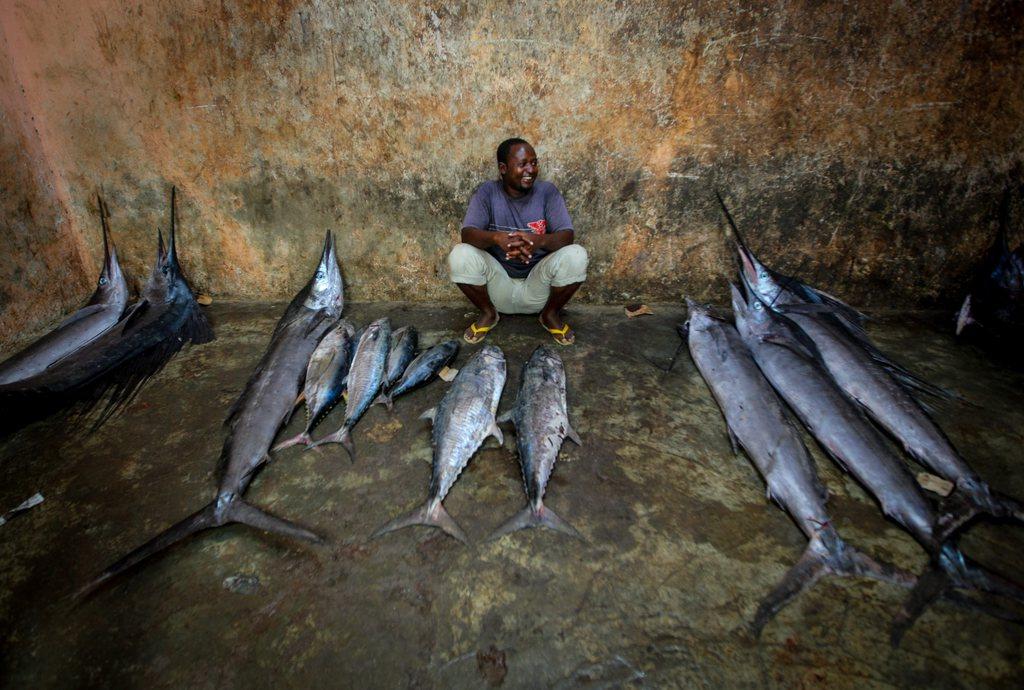 Ein Fischhändler im Mogadischu, Somalia EPA/STUART PRICE / AU-UN IST