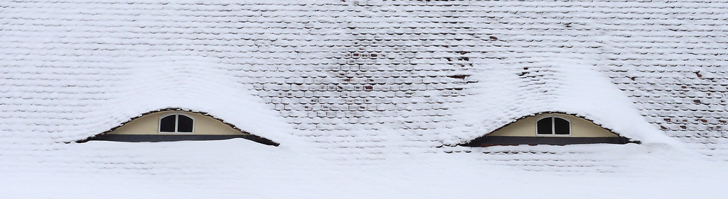 Dach-Augen, Magdeburg (AP Photo/dpa, Jens Wolf)