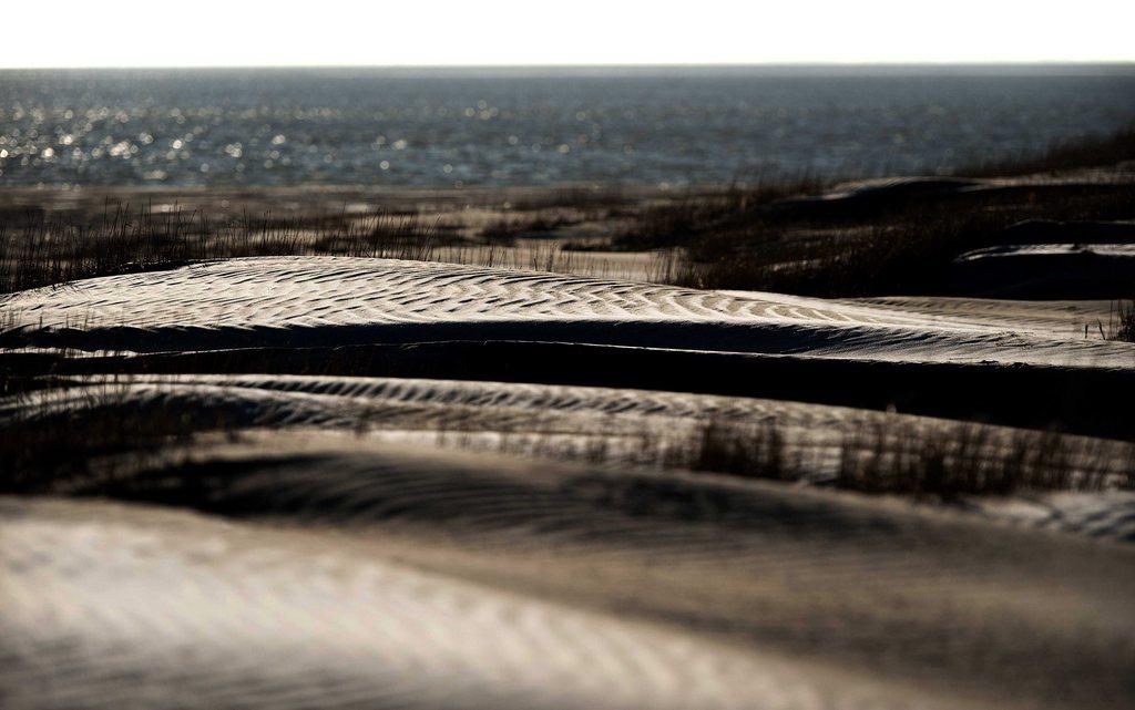 Sanddünen vor Schiemonnikoog, Niederlande (Keystone/EPA/Remko van Waal)