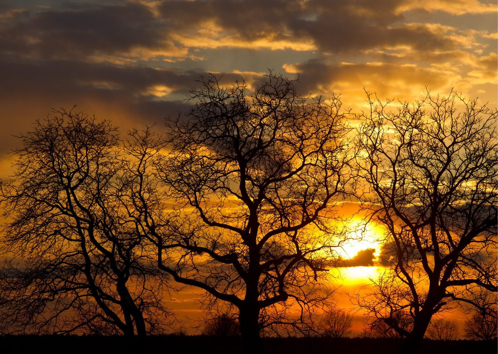 Sonnenuntergang in Sieversdorf, Brandenburg Deutschland EPA/PATRICK PLEUL