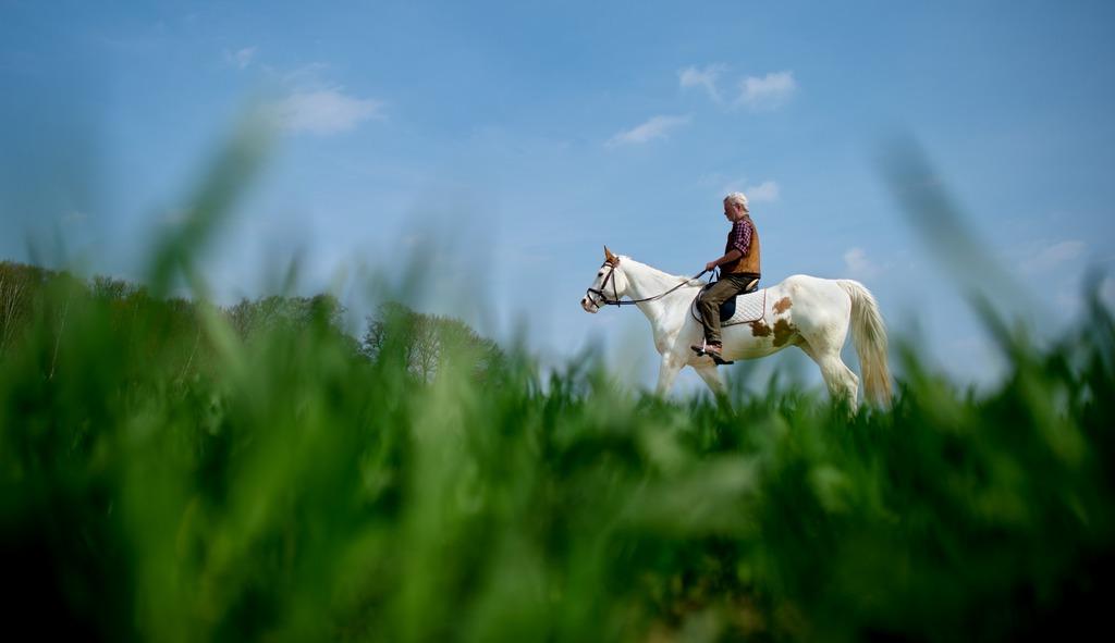Austritt im Frühling von Hiddestorf, Deutschland (Keystone/AP Photo/dpa, Julian Stratenschulte)
