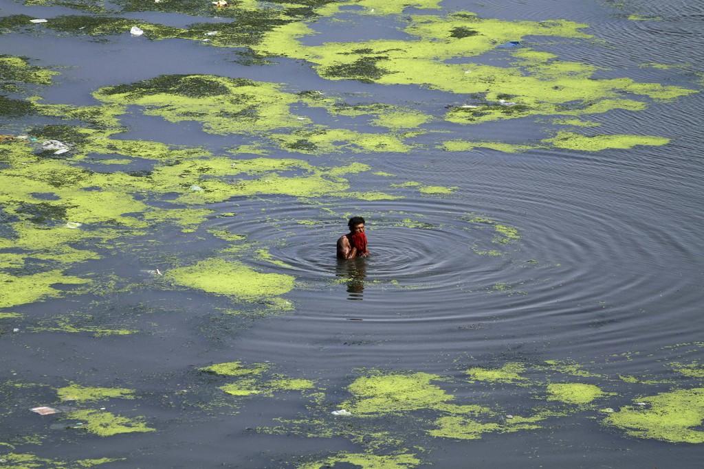 Erfrischendes Bad im Sabarmati in Ahmadabad, Indien (Keystone/AP Photo/Ajit Solanki)