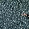 Ein Schwimmer, Thailand EPA/BARBARA WALTON