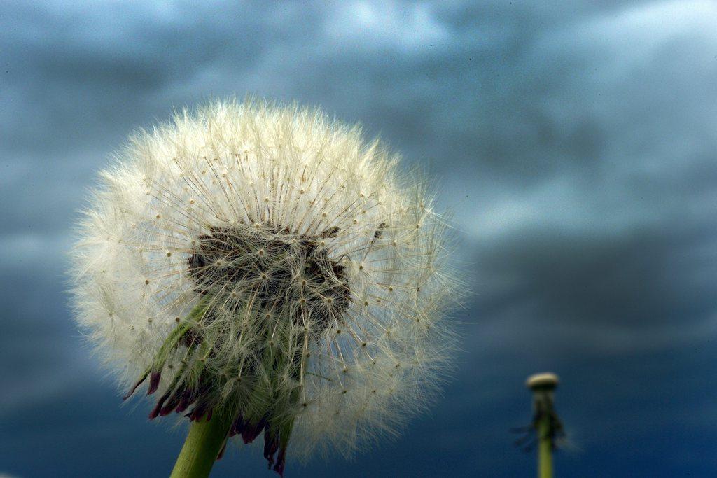 Dunkle Wolken über Kerpen, Deutschland (Keystone/EPA/Federico Gambarini)