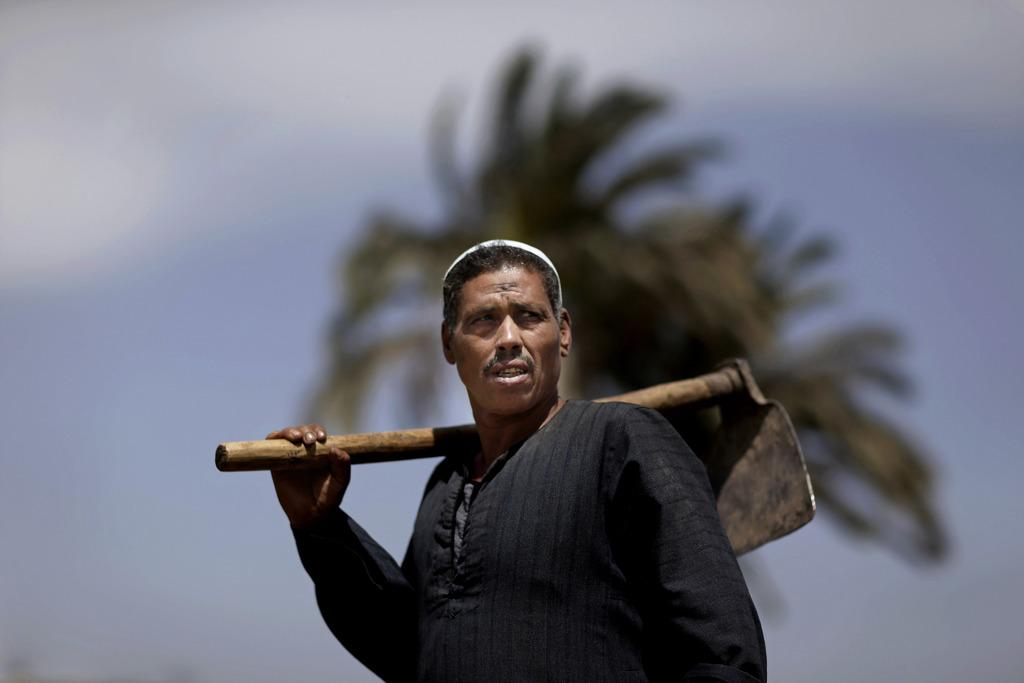 Porträt eines ägyptischen Bauern, nördlich von Kairo, Ägypten  (AP Photo/Hassan Ammar)