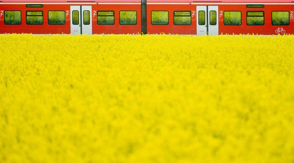 Regionalzug bei Springe, Deutschland (Keystone/EPA/Julian Stratenschulte)