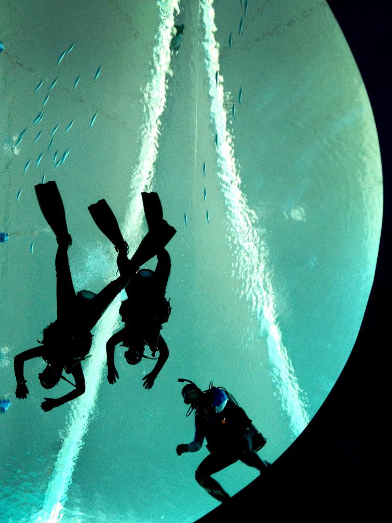 Taucher in einem Aquarium, Singapur (AP Photo/Wong Maye-E)