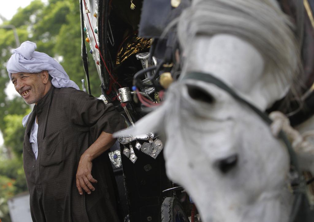 Ägyptischer Kutscher und Pferd, Kairo  (AP Photo/Amr Nabil)