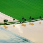 Überflutete Felder nahe Hildesheim EPA/JULIAN STRATENSCHULTE