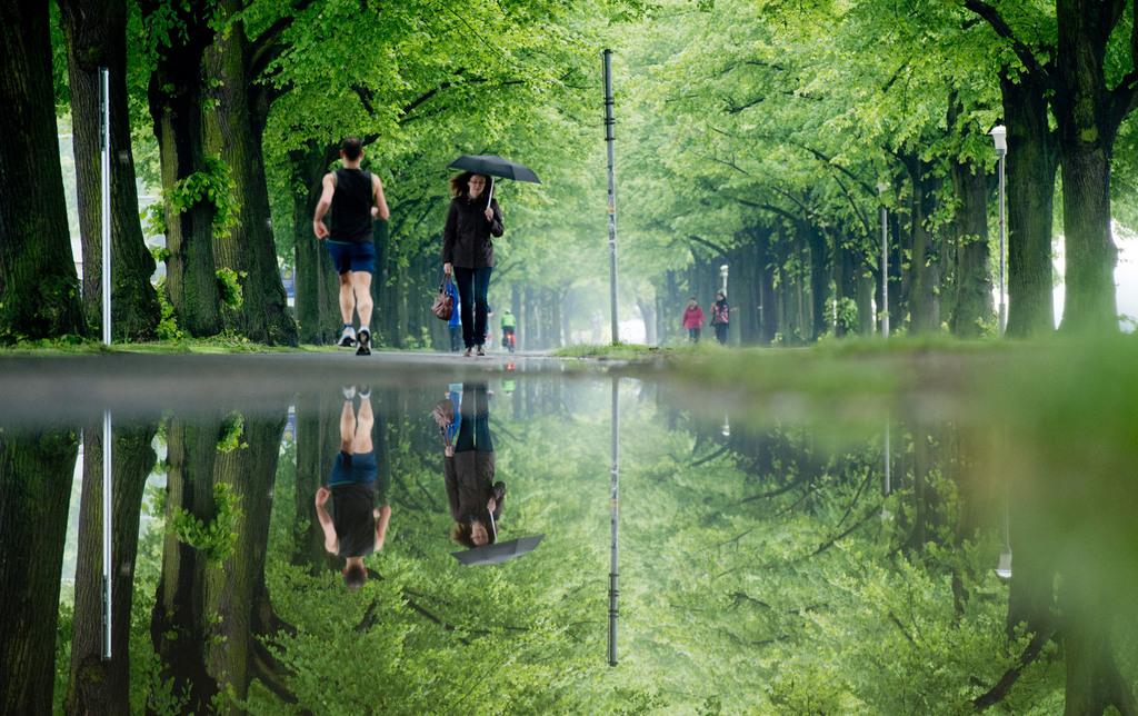 Frühling in einer Allee in Hannover, Deutschland (Keystone/Julian Stratenschulte/picture-alliance/dpa/AP Images)