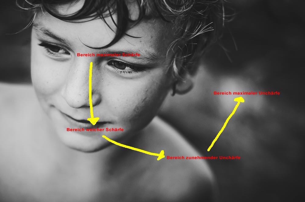 Vierstufiger Schärfeverlauf mit Augenfokussierung (Quelle: Maike Frisch)