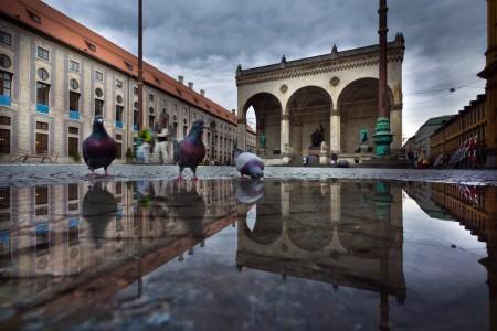 Tauben auf dem Odeonsplatz in München, Deutschland (Keystone/EPA/Peter Kneffel)