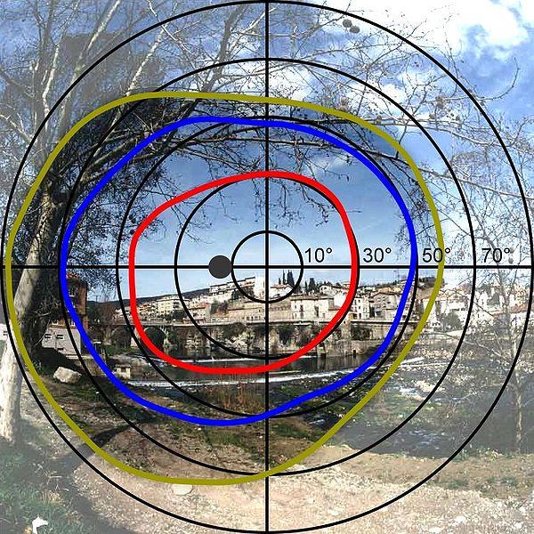 Gesichtsfeld des linken Auges (Quelle: Wikipedia)