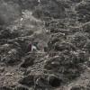 Sammlerin im Müllberg, Ahmadabad, Indien (AP Photo/Ajit Solanki)