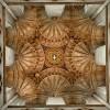"""Auf Platz fünf finden wir eine Architekturaufnahme der Extraklasse von Jens Hutter. Er hat die Decke der Kathedrale Canterbury 9 mal mit unterschiedlichen Belichtungen fotografiert und anschliessend als HDR zusammengefügt. In der bereits veröffentlichten Bildkritik schreibt unser Autor """"Auch der plastische Eindruck ist enorm und der bedacht eingesetzten HDR-Technik mit ihrer beträchtlichen Verstärkung des Mikrokontrasts geschuldet."""""""