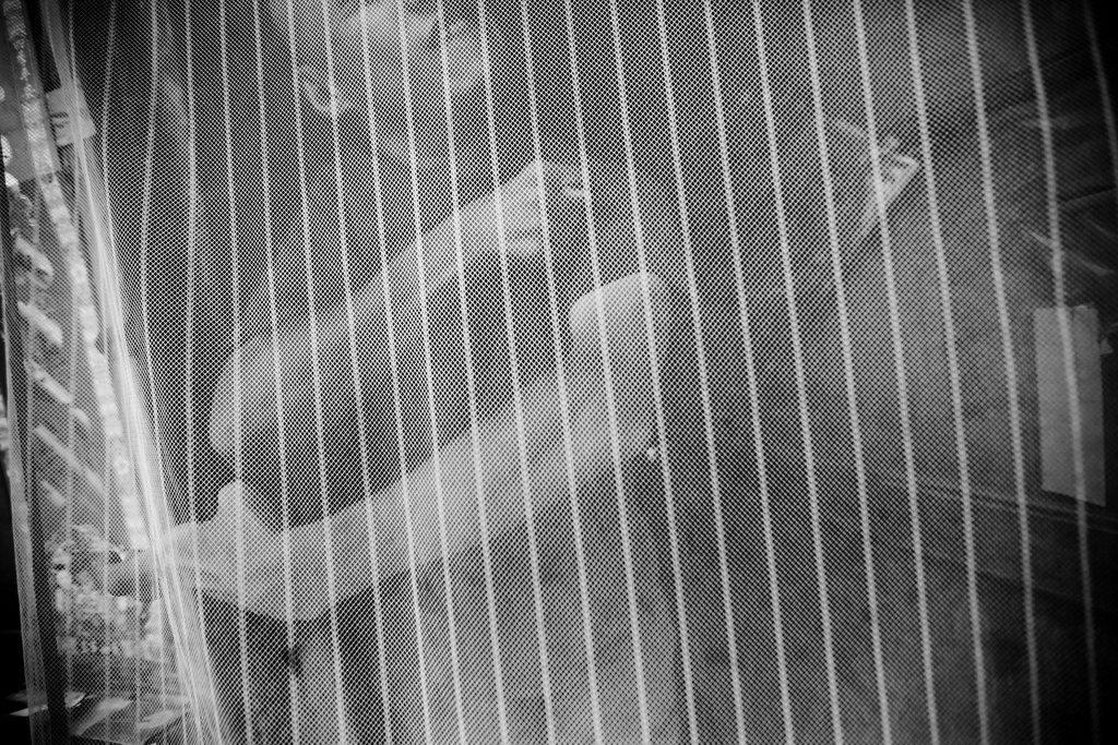 Porträt des behinderten chinesischen Künstlers Xi Fu, in schwarzweiß EPA/HOW HWEE YOUNG