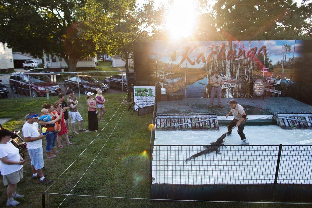 Serie Ländliche Jahrmärkte und Messen in Iowa - hier: Alligator-Show beim Great Jones County Fair and Food Fest in Monticello EPA/JIM LO SCALZO