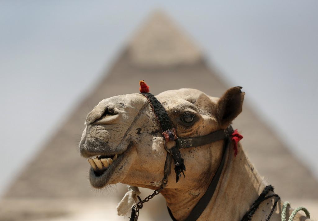 Seit der Unruhen in Agypten ist der Tourismus stark eingebrochen und die Beach Resorts stehen leer. (AP Photo/Lefteris Pitarakis)