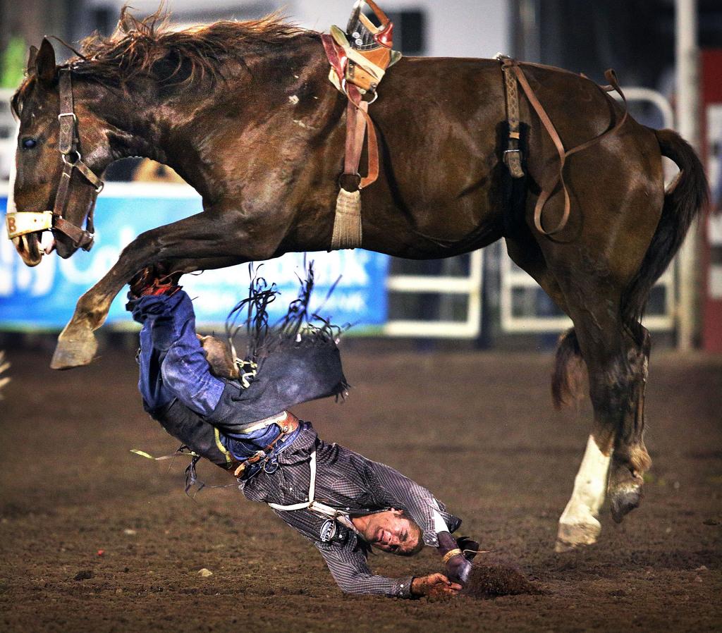 Rodeo in Walla Walla Wash. USA  (AP Photo/Walla Walla Union-Bulletin, Jeff Horner)