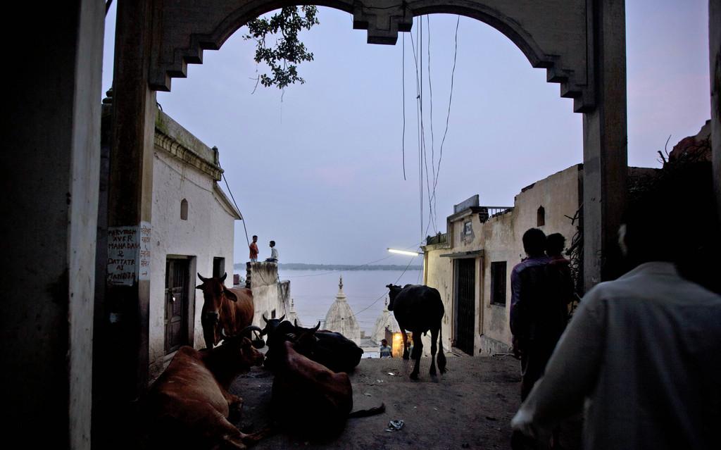 Abendliche Szene am Ganges, Varanasi Indien (AP Photo/Rajesh Kumar Singh)