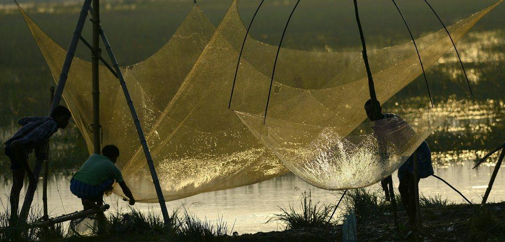 Indische Bauern beim Fischen in Budhabudhi, Indien (Keystone/EPA/STR)