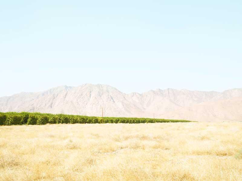 Henrik Spohler, Grapefruitanbau im Borrego Valley, USA 2011, 109 x 133 cm, Pigmentprint kaschiert auf Aludibond © Henrik Spohler