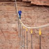 Hochseilartist Nick Wallenda über dem Grand Canyon (Keystone/AP Photo/Tiffany Brown)