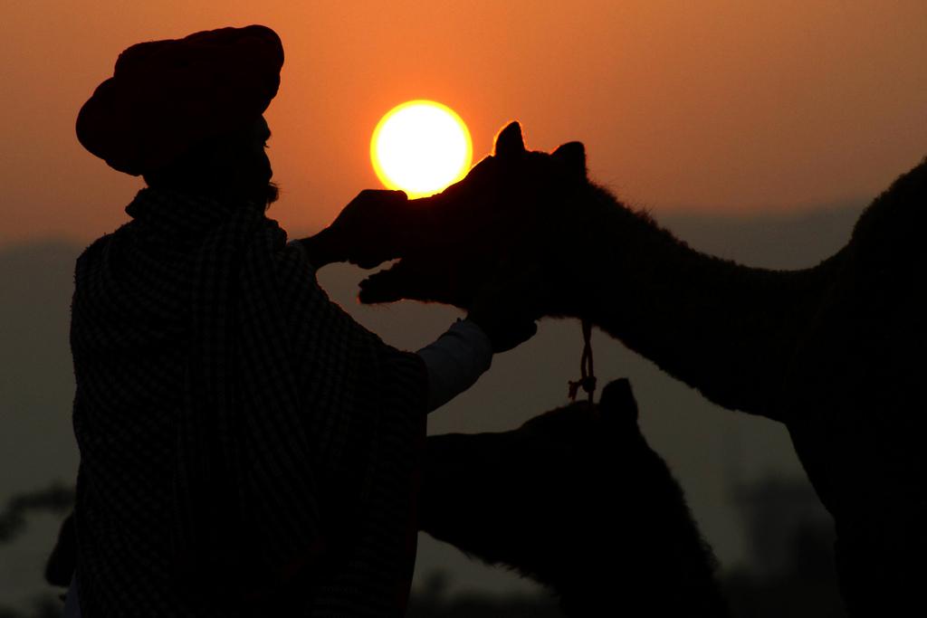 Auf dem Kamelmarkt in Pushkar, Indien (Keystone/AP Photo/Deepak Sharma)