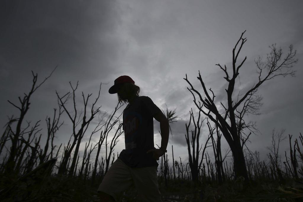 Entlaubte Bäume nach dem Taifun, Tacloban, Leyte, Philippinen (AP Photo/Aaron Favila)