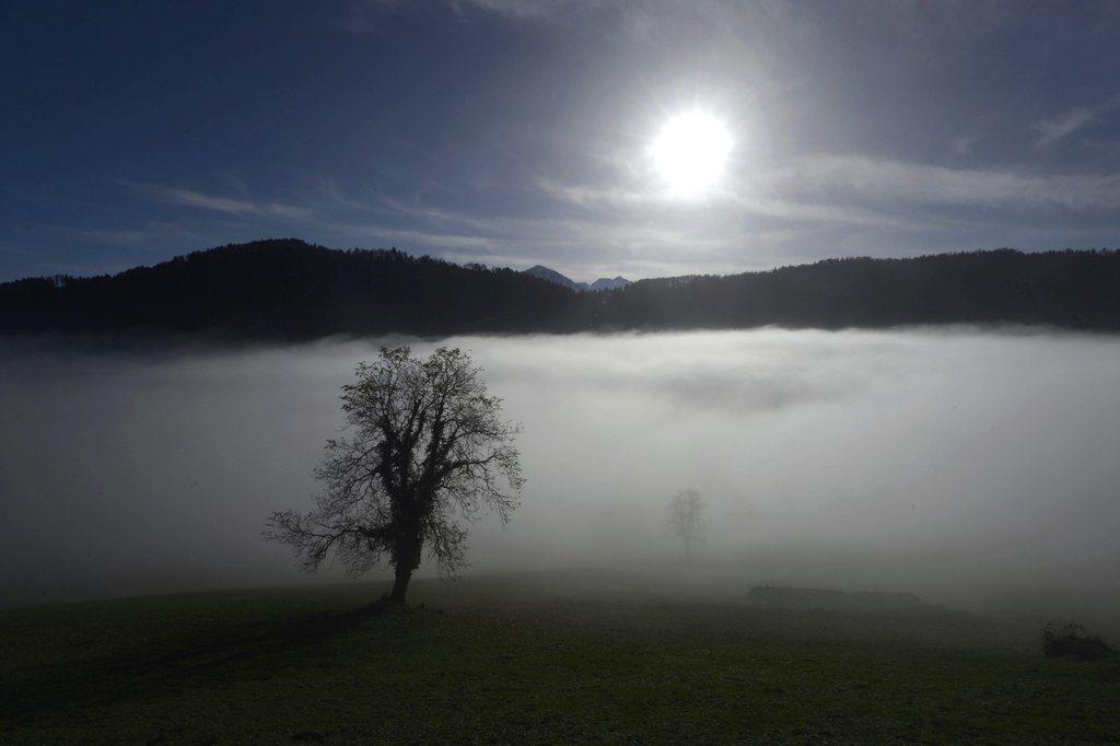 An der Nebelgrenze auf rund 700 Metern in Obbürgen ob Stansstad im Kanton Nidwalden, CH  (KEYSTONE/Urs Flueeler)