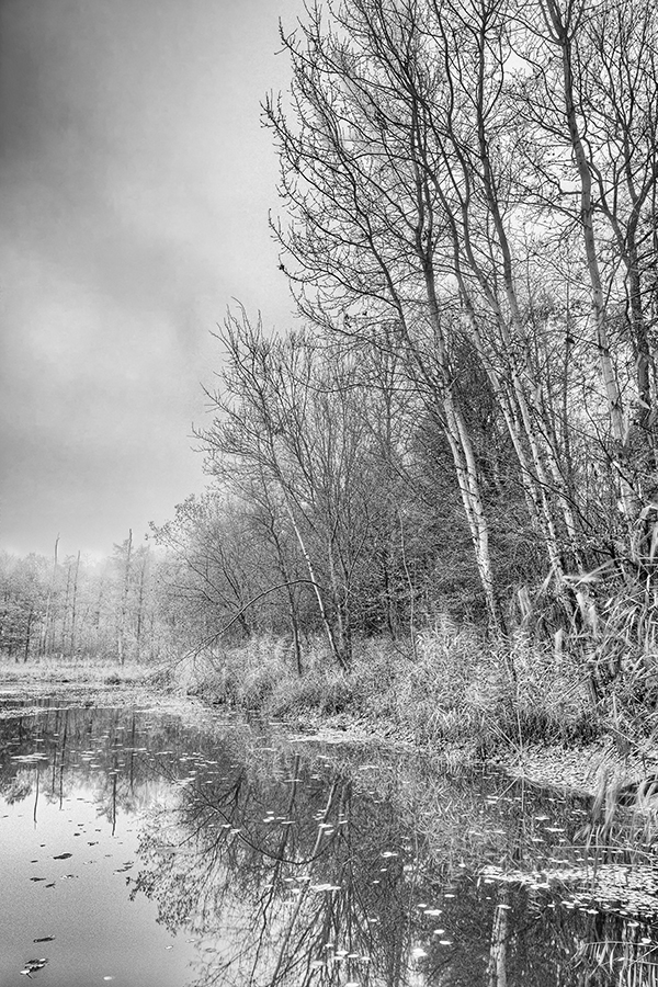 Bild 11 ('Hohenackersee bei Schmie'