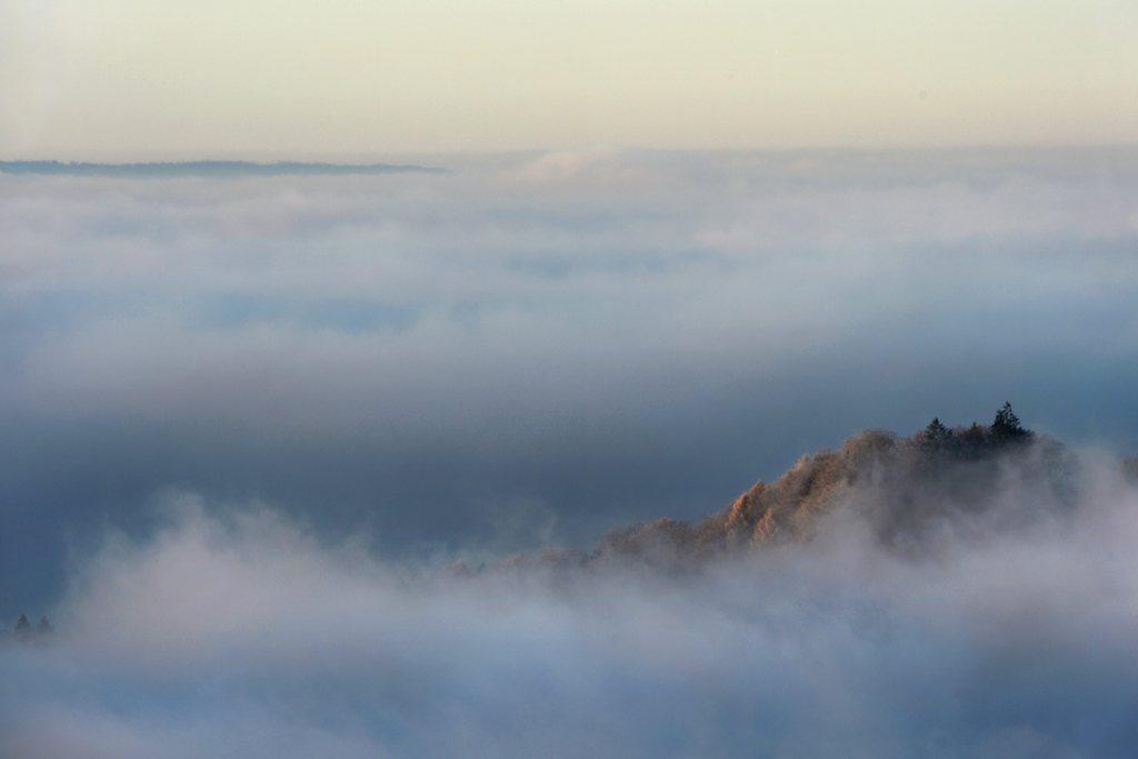 Nebel über Konstanz, Deutschland (Keystone/EPA/Felix Kästle)